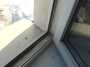 Моем окна в квартире