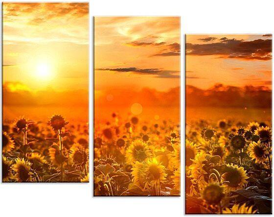 Модульная картина Солнечный вечер