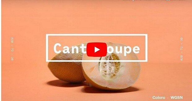 Цвет Cantaloupe