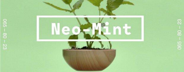 Цвет neo-mint