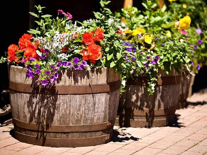 Клумбы для цветов из боченков