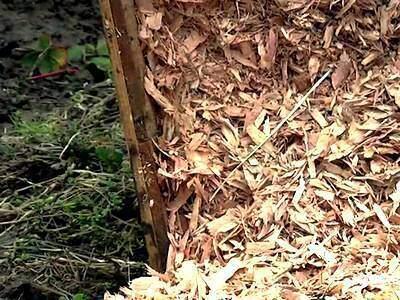 Укрытие клубники древесной щепой