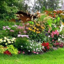 Как посадить красиво цветы на даче своими руками