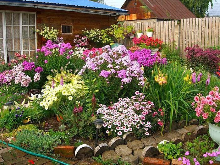 Как посадить красиво цветы на даче самостоятельно