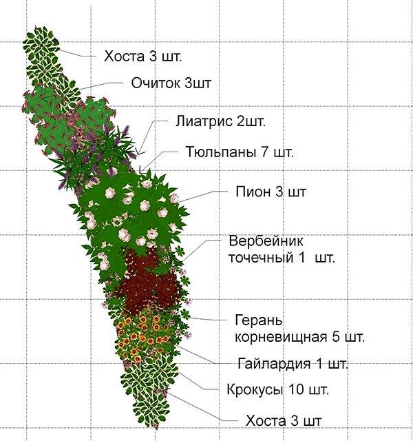 Непрерывно цветущий миксбордер