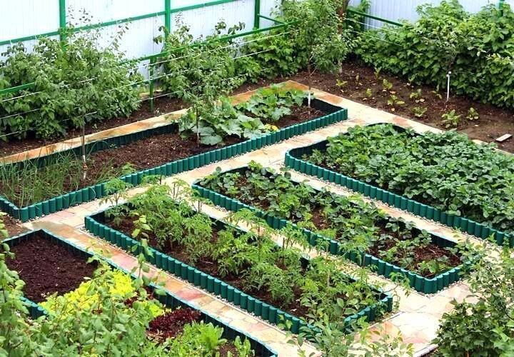 как правильно разбить сад и огород: схемы фото