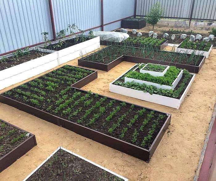 Регулярный стиль в планировании овощных грядок