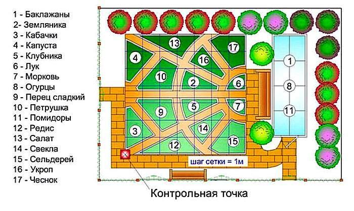 Схемы посадки огорода