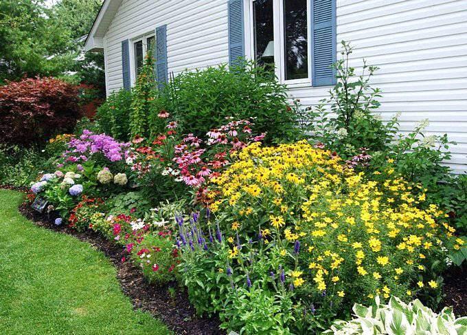 Красивый цветник под окнами домаа